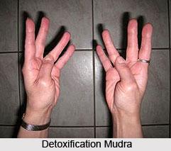 Detoxification Mudra