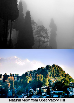 Observatory Hill, Tourist Places in Darjeeling, West Bengal