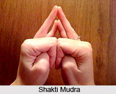Shakti Mudra, Yoga