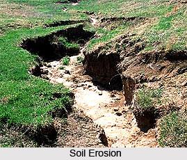 Soil Erosion in Eastern Zone