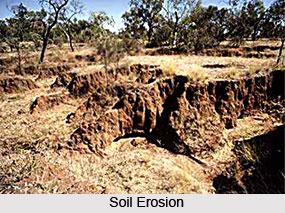 Soil Erosion in Western Zone, Soil Erosion in India