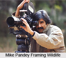 Mike Pandey, Indian Conservationist