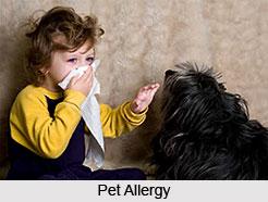 Contact allergy