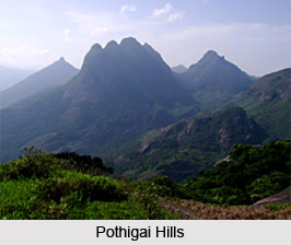 Tirunelveli District