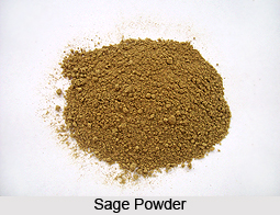 Sage, Indian Spice