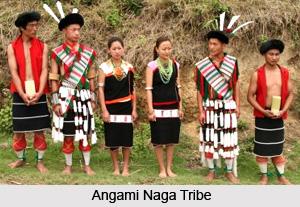Kohima District, Nagaland