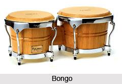 Bongo, Percussion Musical Instrument
