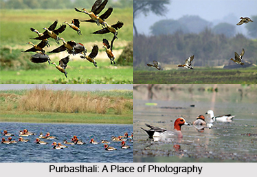 Purbasthali, Bardhaman District, West Bengal