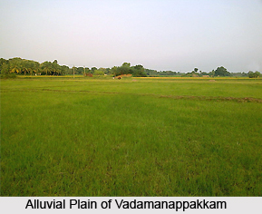 Vadamanappakkam, Tamil Nadu