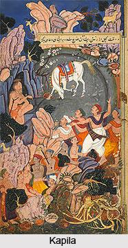 Worship of Kapila, Agni Purana