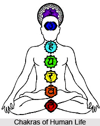 Exercise For The Emotional Body , Chakras