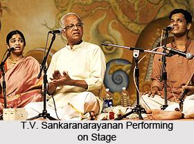 T.V. Sankaranarayanan, Indian Musician