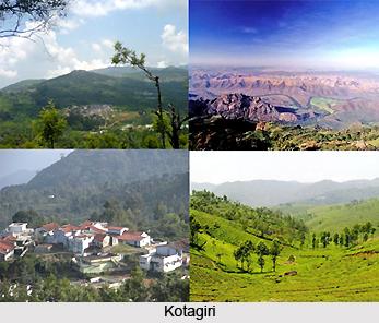 Tourism in Nilgiris District