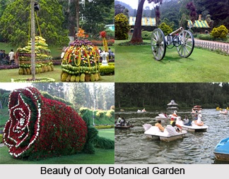 Visiting places in Udhagamandalam (Ooty)