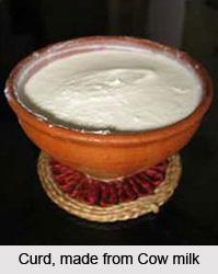 Curd, Panchagavya