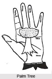 Knots, Palmistry
