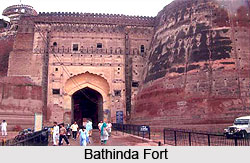 Forts in Punjab