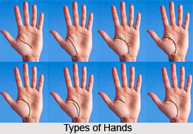 Fore Parts Of Fingers, Palmistry