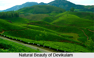 Devikulam , Hill station in Kerala