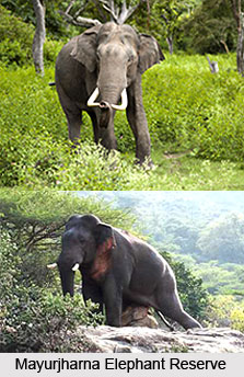 Mayurjharna Elephant Reserve