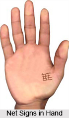 Net  Signs in Hand, Palmistry