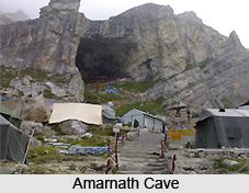 Amaranth, Jammu and Kashmir