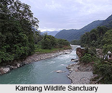 Kamlang Wildlife Sanctuary, Lohit District, Arunachal Pradesh