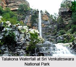 Sri Venkateswara National Park, Andhra Pradesh