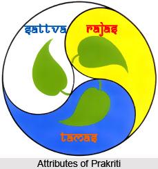 Samkhya Philosophy