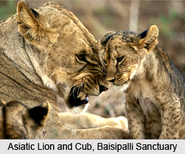 Baisipalli Wildlife Sanctuary, Nayagarh District