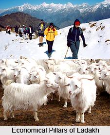 Economy of Ladakh