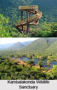 Kambalakonda Wildlife Sanctuary, Visakhapatnam District, Andhra Pradesh