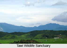 Tawi Wildlife Sanctuary, Aizawl District, Mizoram