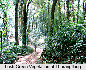 Thorangtlang Wildlife Sanctuary, Lunglei District, Mizoram