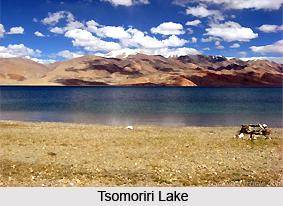 Tsomoriri Wetland Conservation Reserve, Ladakh