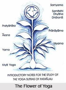 Visesa avisesa lihgamdtra alihgani gunaparvani, Patanjali Yoga Sutra