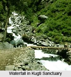 Kugti Wildlife Sanctuary, Chamba District, Himachal Pradesh