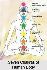 Duhkha anusayi dvesah, Patanjali Yoga Sutra