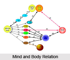 Exercise For The Physical Body , Chakras