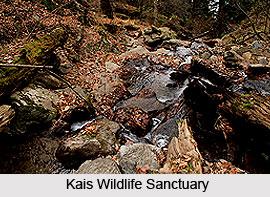 Kais Wildlife Sanctuary, Kullu District, Himachal Pradesh