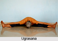 Ugrasana, Cultural Asana