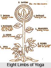 Vivekakhyatih aviplaca hanopayah, Patanjali Yoga Sutra