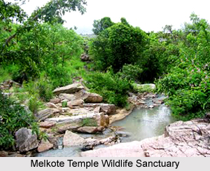 Melkote Temple Wildlife Sanctuary, Mandya district, Karnataka