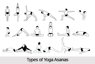 1 Types Of Yoga Asanas