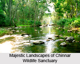 Chinnar Wildlife Sanctuary, Idukki District, Kerala