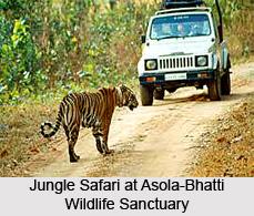Asola-Bhatti Wildlife Sanctuary, Delhi