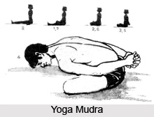 Balesu hasti baladini, Patanjali Yoga Sutra