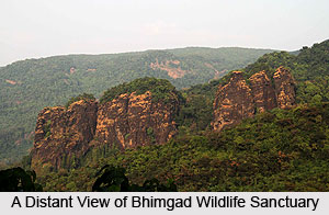 Bhimgad Wildlife Sanctuary, Belgaum District, Karnataka