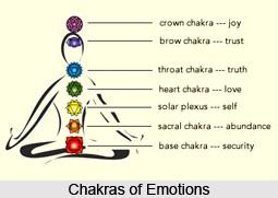 Companion Chakras