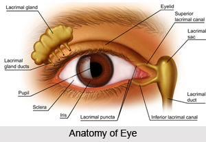 Eye Diagnosis in Ayurveda